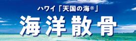 ハワイ海 散骨プラン